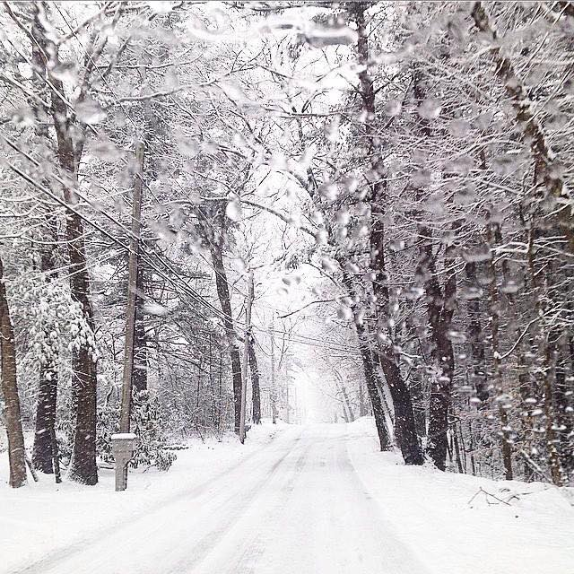 Beautiful example of #WinterWhite on the back roads of Massachusetts Photography by Linda Holt of Linda Holt Designs.