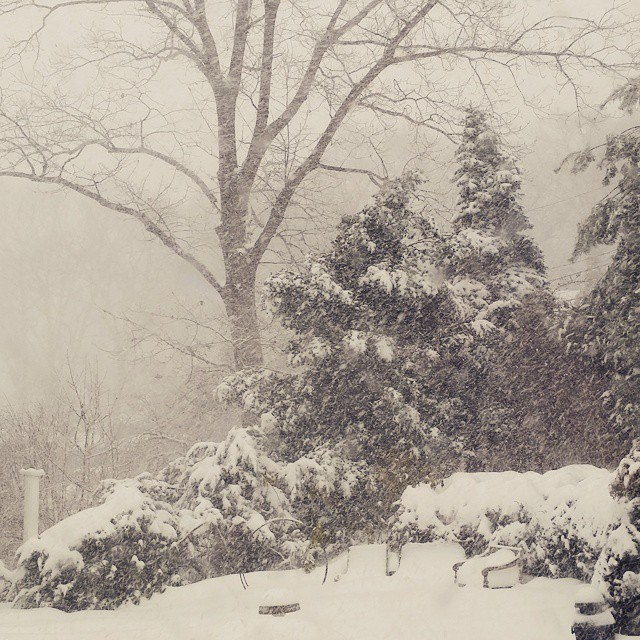 Snapshot of a winter white out during snowstorms on Long Island. Photography by Susan Serra of Susan Serra Associates.